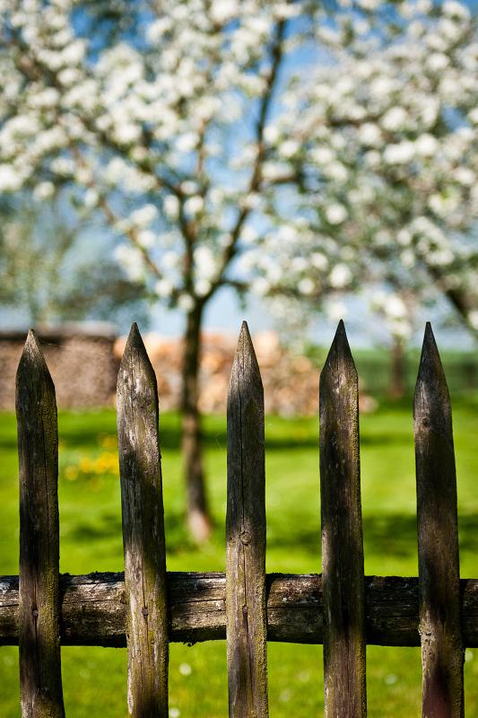 Pohled do české zahrady