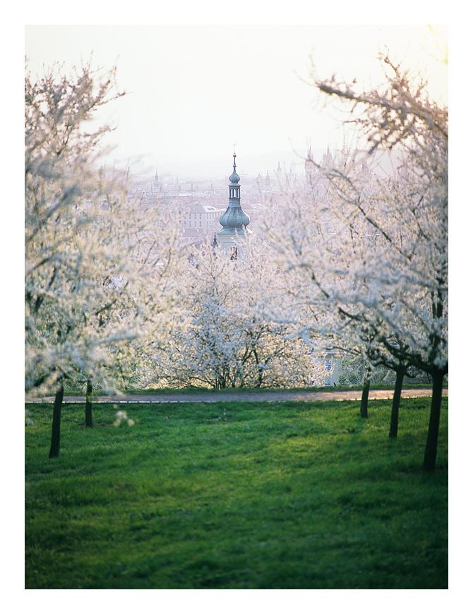 Jarní Praha
