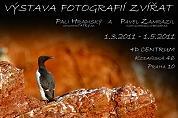 Výstava fotografií zvierat